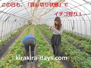 kirakira4②