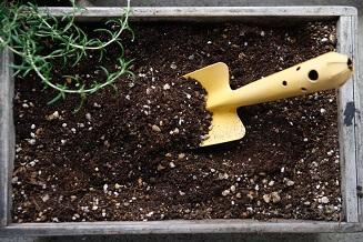プランターの土を捨てるには?使い終わった後どうする?