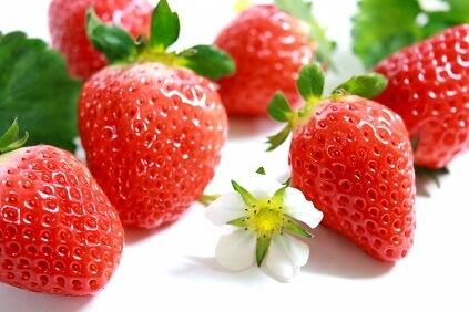 イチゴ狩り!千葉でおすすめ!親子でゆっくり楽しめるイチゴ園!